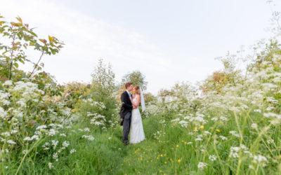 Bride and groom in wild flower meadow